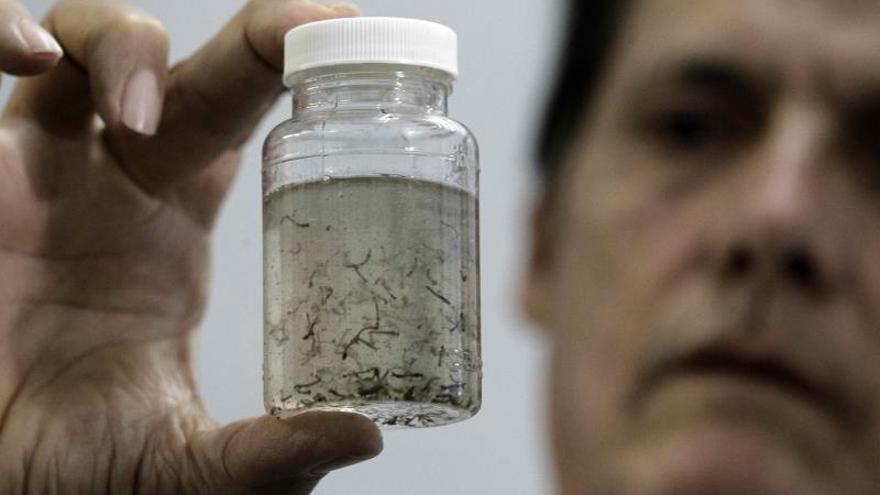 Estados Unidos confirma su primer caso del zika por transmisión sexual