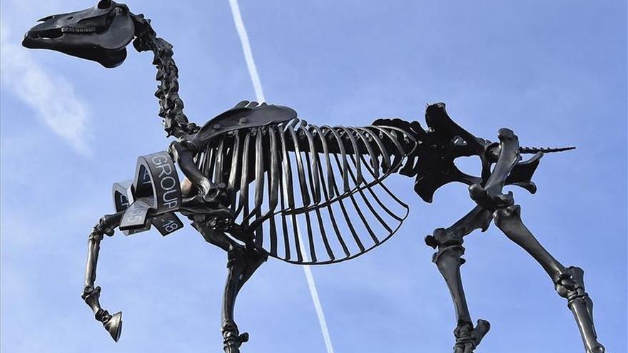 Un esqueleto de caballo ocupa el cuarto plinto de la Plaza de Trafalgar