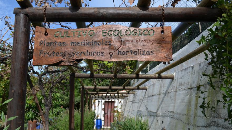 Entrada al huerto ecológico de Jorge Cruz en el Valle de Agaete (EVA GONZÁLEZ)