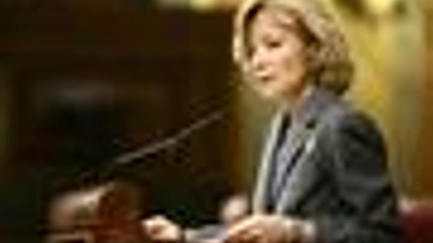 Elena Salgado, en el congreso de los diputados