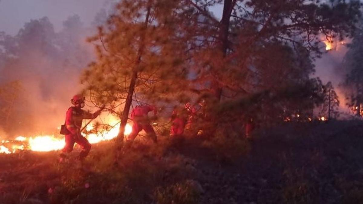 Trabajos contra el incendio de Arico realizados durante la noche, centrado en el ataque directo al fuego con herramienta manual y la creación de líneas de defensa.