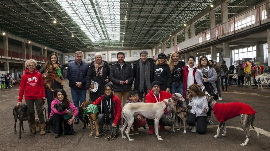"""Dani Rovira: """"Una sociedad que cuida de sus animales es una sociedad mejor"""""""