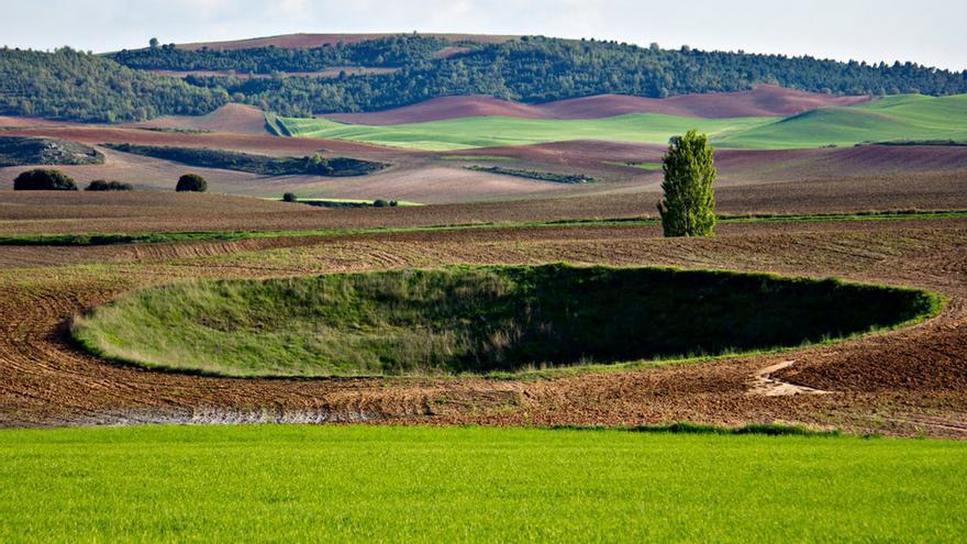 Complejo Lagunar de Arcas (Cuenca) FOTO: Turismo Castilla-La Mancha
