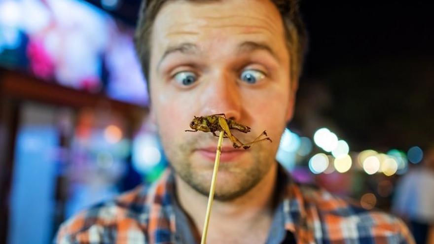 El consumo habitual de insectos en España tardará en llegar.