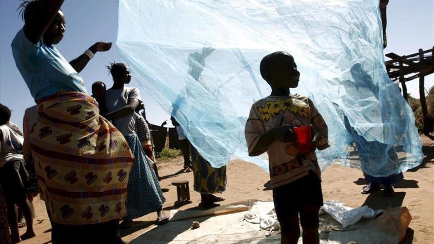 Los reguladores europeos aprueban la primera vacuna contra la malaria
