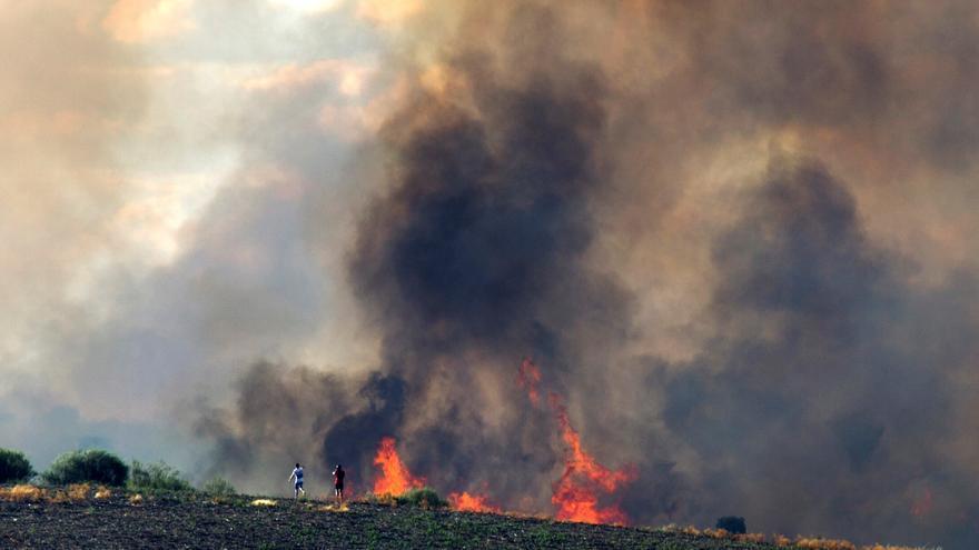 Un incendio forestal amenaza zonas pobladas en Lóber de Aliste (Zamora)