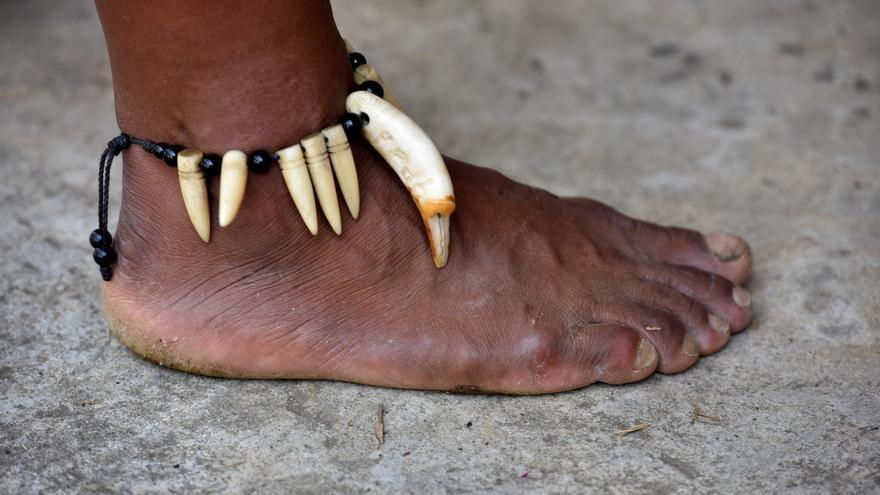 """Indígenas de la cuenca amazónica exigen garantías de vida ante """"asesinatos"""""""