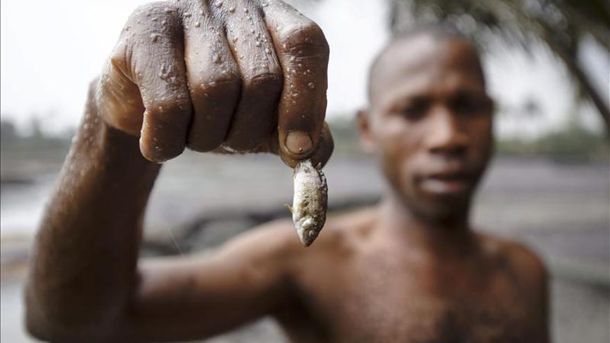 Una ONG pide a Shell que acelere la limpieza de sus vertidos en el Níger