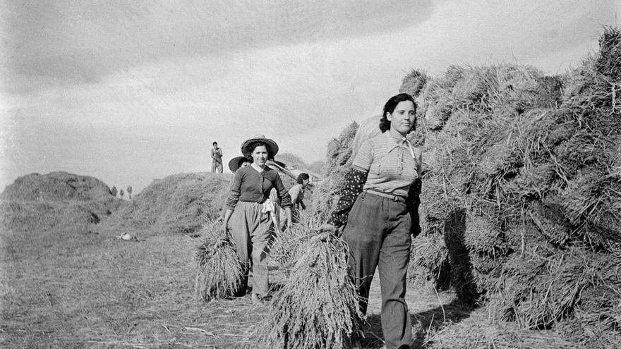 La exposición también muestra las colectivizaciones agrícolas en otros puntos de Catalunya.