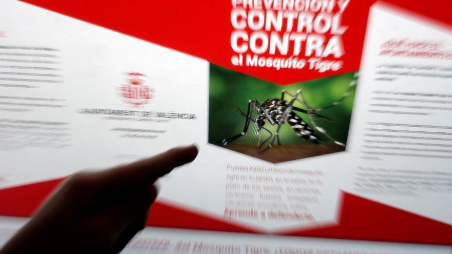 La población de mosquito tigre aumenta un 70 % en el primer semestre del año