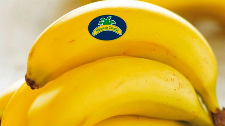 Manilla de plátano producido en Canarias