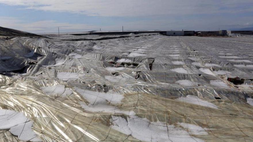 Vista de un invernadero afectado por una fuerte tormenta de granizo en Almería.