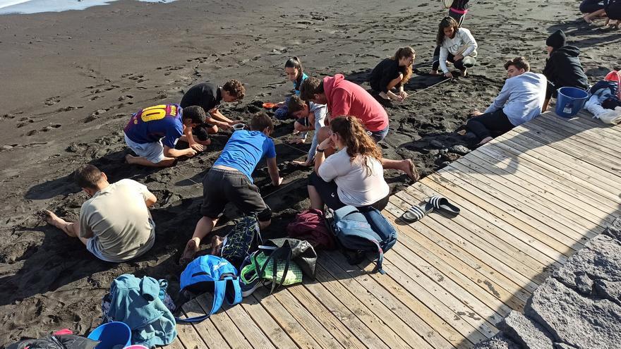 Alumnos en el litoral de Los Cancajos.