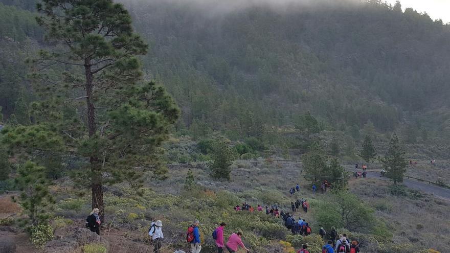 Participantes en el recorrido, esta mañana de sábado en el monte