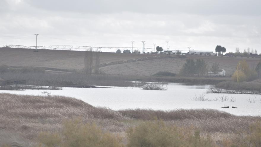 La sobreexplotación del agua subterránea condiciona el equilibrio de Las Tablas de Daimiel.