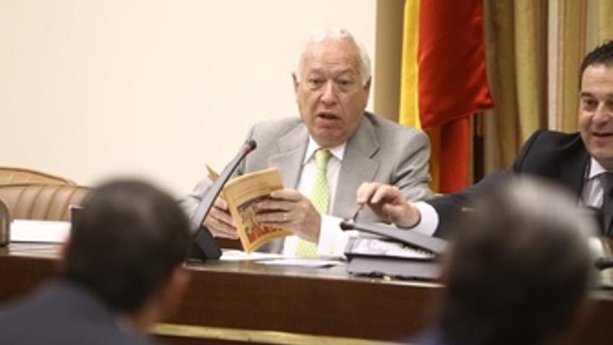 José Manuel Margallo