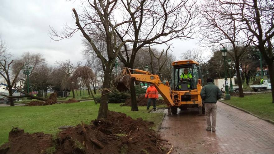 La reforma integral del parque de La Marga prevé la sustitución de 46 árboles.