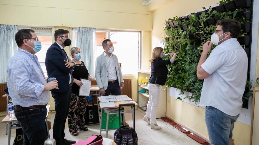 Un jardín vertical en el aula, premio 'Supercirculares 2021'