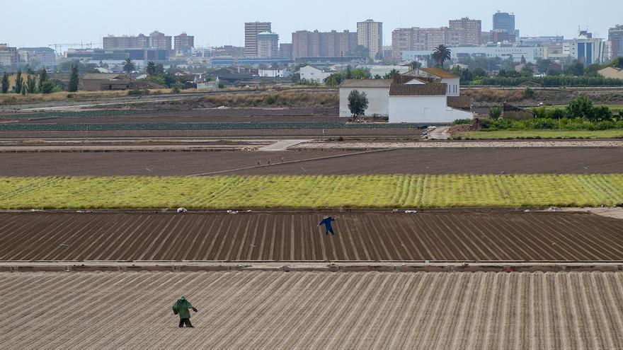 Vista de l'Horta d'Alboraia amb la Universitat Politècnica de València al fons