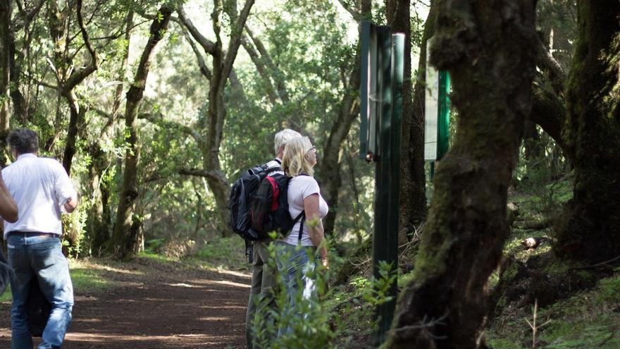 Turistas en el parque nacional de Garajonay