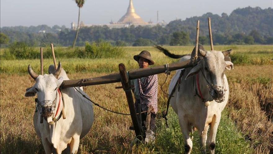 Li Keqiang buscará en Birmania reducir la tensión regional para ampliar el comercio