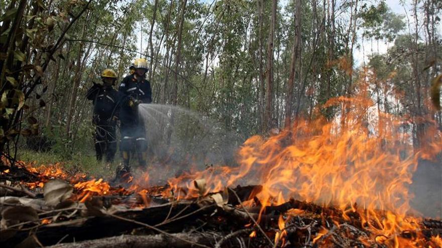 """Autoridades dominicanas """"avanzan"""" en el control definitivo de incendios forestales"""