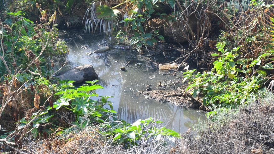Vertido de aguas residuales de origen industrial en el polígono del Valle de Güímar