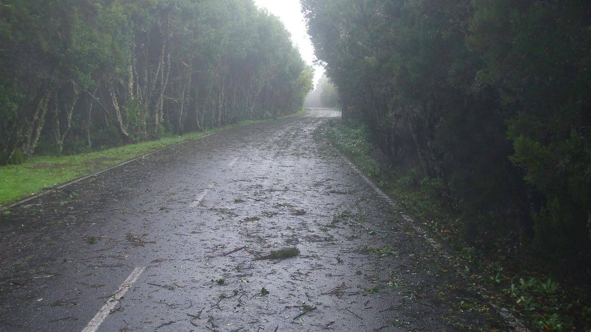 Efectos del viento en La Gomera