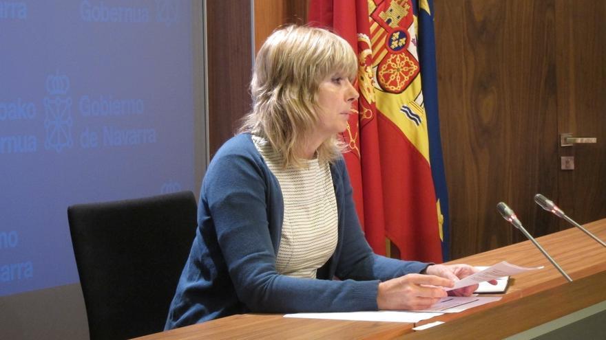 El Gobierno de Navarra estudia reducir a la mitad sus órganos colegiados con participación ciudadana