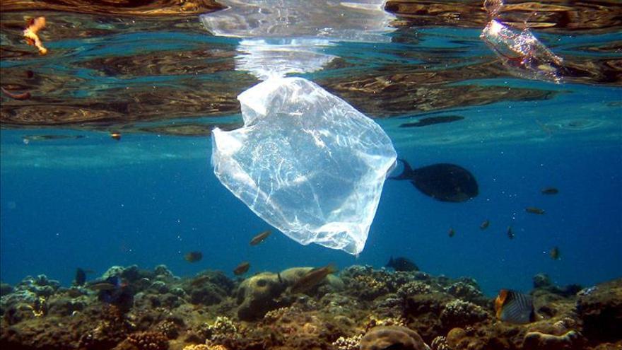 Anualmente se vierten ocho millones de toneladas de plástico al mar