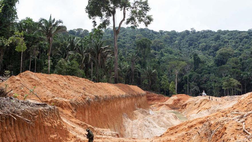 """Bolsonaro exige """"patriotismo"""" para ocultar los datos de deforestación del Amazonas (2)"""