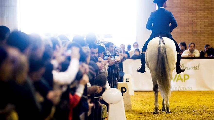 Más 200.000 personas han visitado Salón Internacional del Caballo en Sevilla