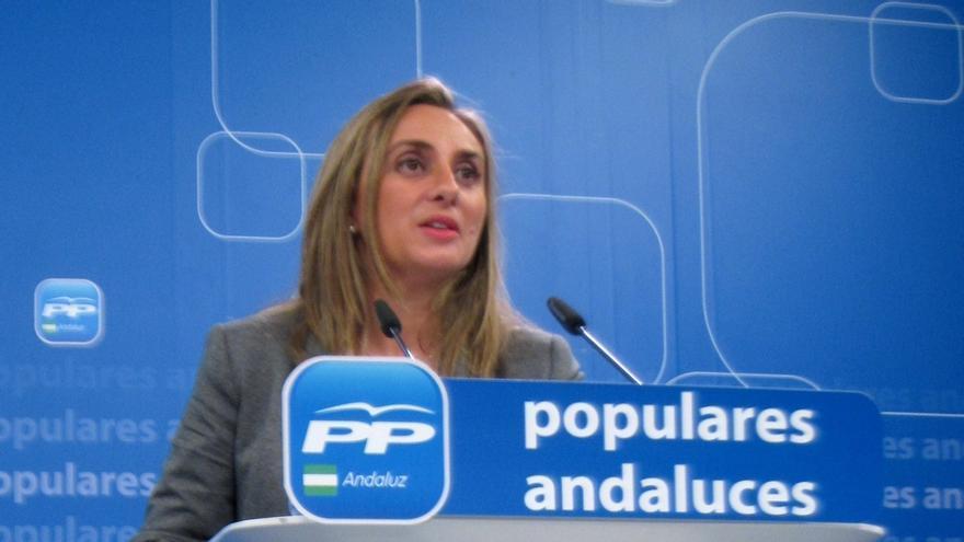 """PP exige información a la Junta de Andalucía sobre la beca de Errejón y pide que """"no se pisotee"""" la igualdad y el mérito"""