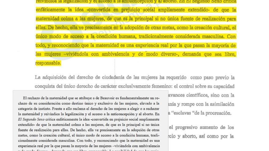 Tesis doctoral de Carmen Montón con un párrafo plagiado