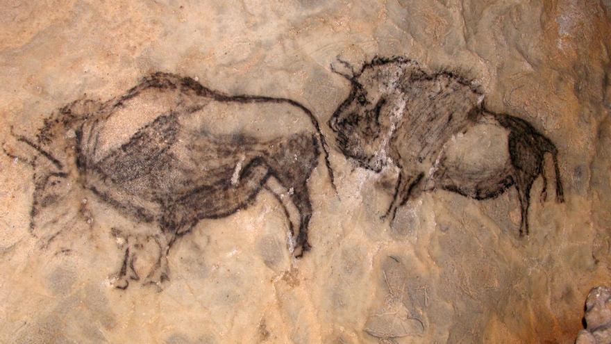 Impresionantes bisontes de la Cueva de Santimamiñe, en el País Vasco.