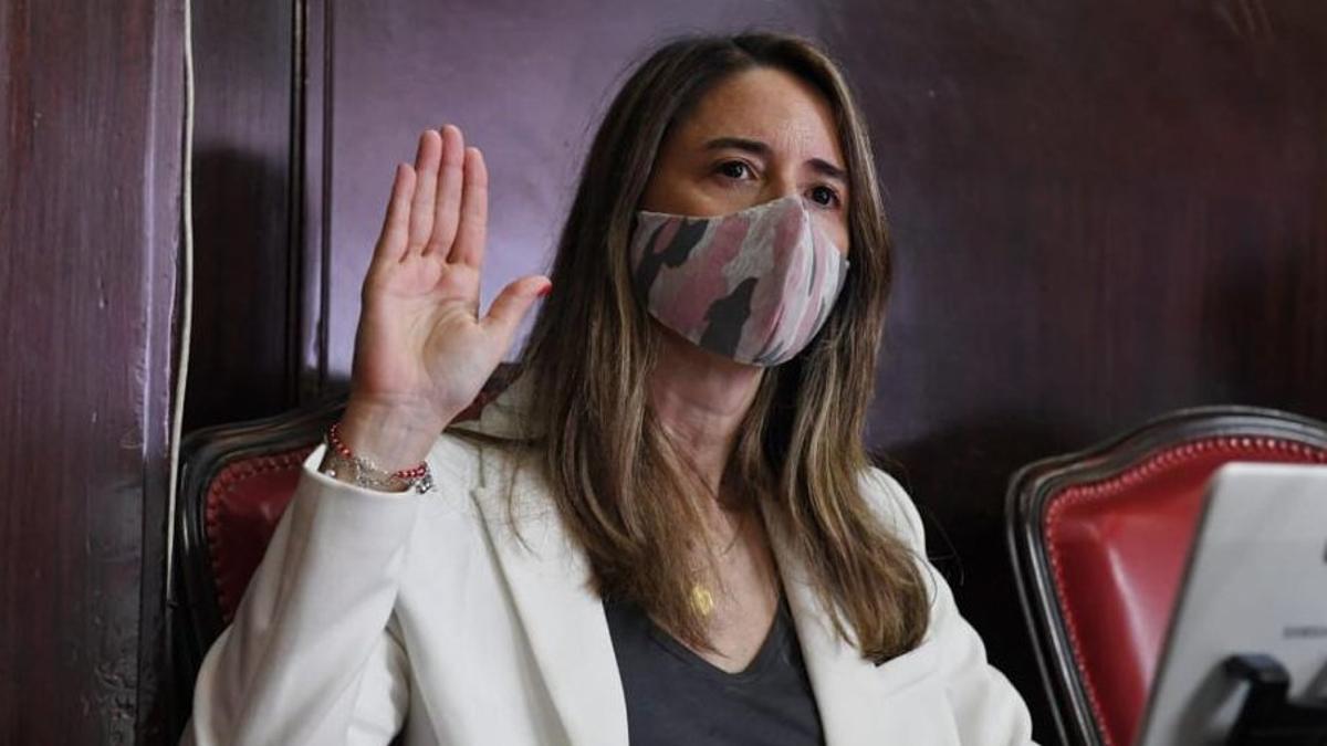 La senadora provincial de Juntos por el Cambio, Flavia Delmonte.