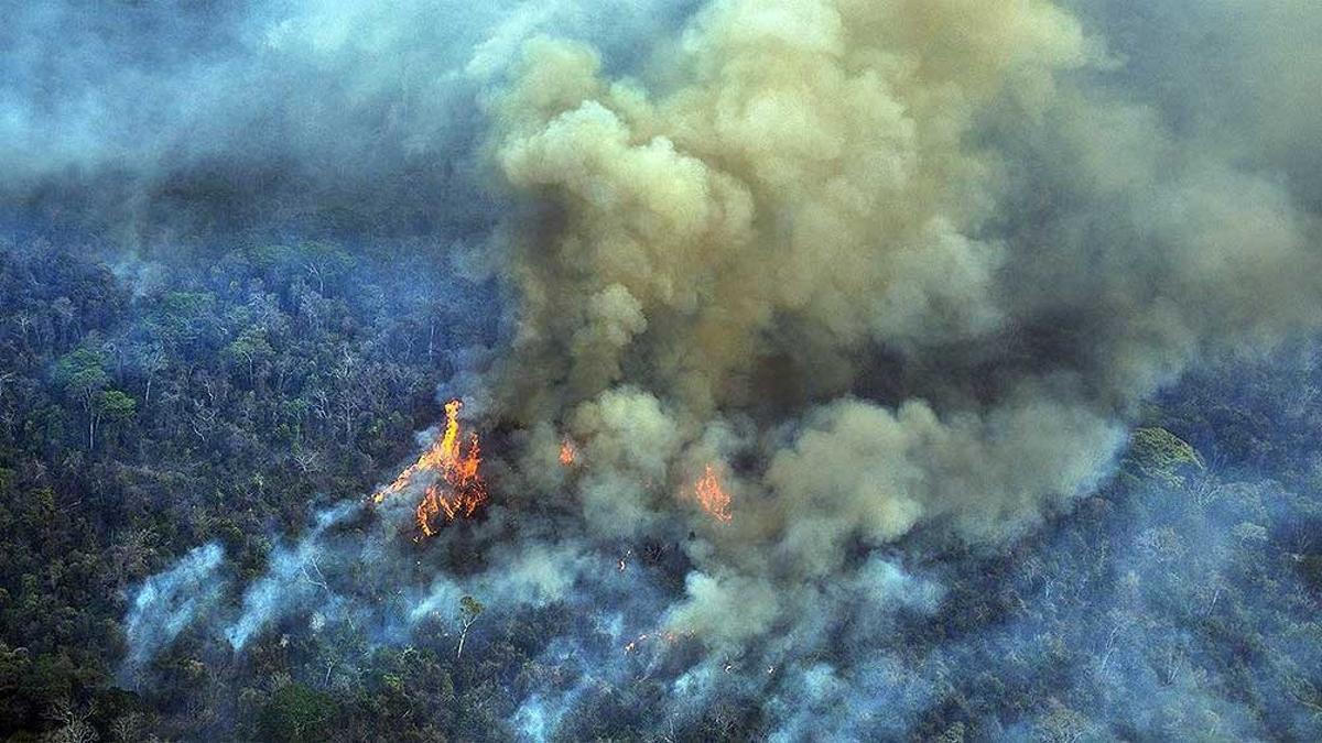 La nueva promesa brasileña es reducir la destrucción amazónica a 8.700 kilómetros cuadrados anuales en 2022.