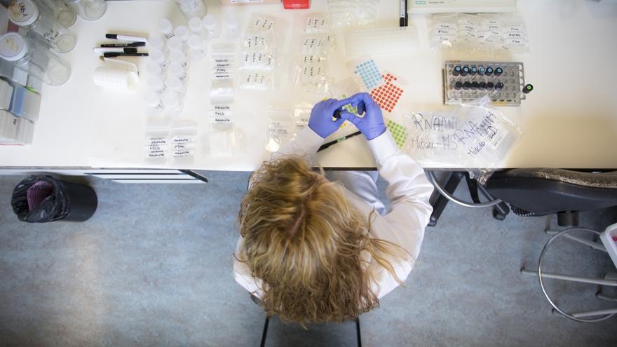 La UPNA obtiene el sello 'HR Excellence in Research' en políticas de recursos humanos para personal investigador