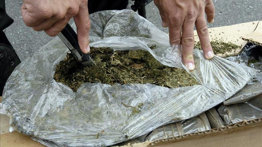 "Incautan en Brasil 1,5 toneladas de marihuana destinada a las favelas en ""guerra"""