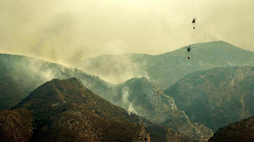WWF: La prevención es la única vía frente a incendios como el de Llutxent