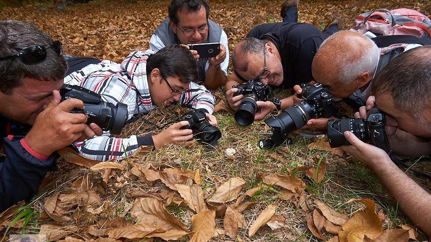 En la imagen, miembros de la expedición fotografiando una seta. Foto: JOSÉ F. AROZENA.