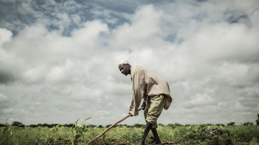 Ibrahim Fadoul, esposo de Achta Fadoul vive en Midjiguir, a 23 kilómetros de Mangalmé, en la región de Guera (Chad) / FOTO: Pablo Tosco - Oxfam Intermón