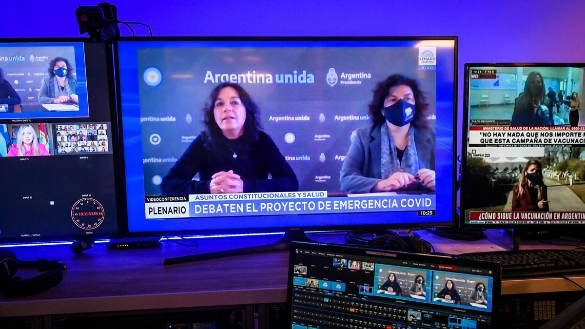 La ministra de Salud, Carla Vizzotti, y la secretaria de Legal y Técnica, Vilma Ibarra, defendieron el proyecto del Ejecutivo ante Senadores.