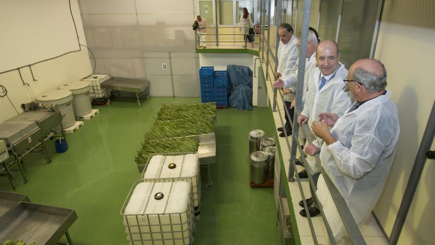Laboratorio de Aloe Vera en Arinaga