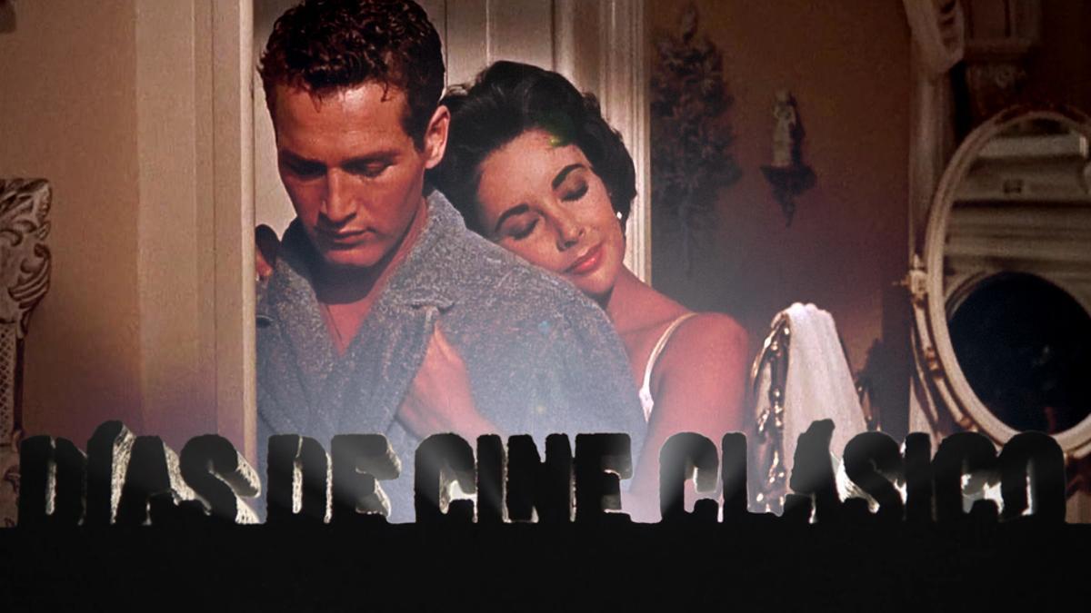 Paul Newman y Elizabeth Taylor en 'La gata sobre el tejado de zinc'