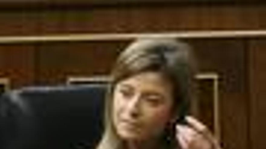 """Aído pide a las mujeres del PP que sean """"responsables"""" y voten a favor de la nueva ley"""