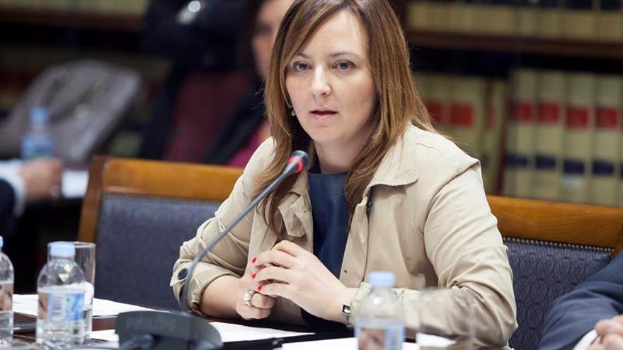 La consejera de Política Territorial, Sostenibilidad y Seguridad del Gobierno de Canarias, Nieves Lady Barreto. (EFE/Ramón de la Rocha)