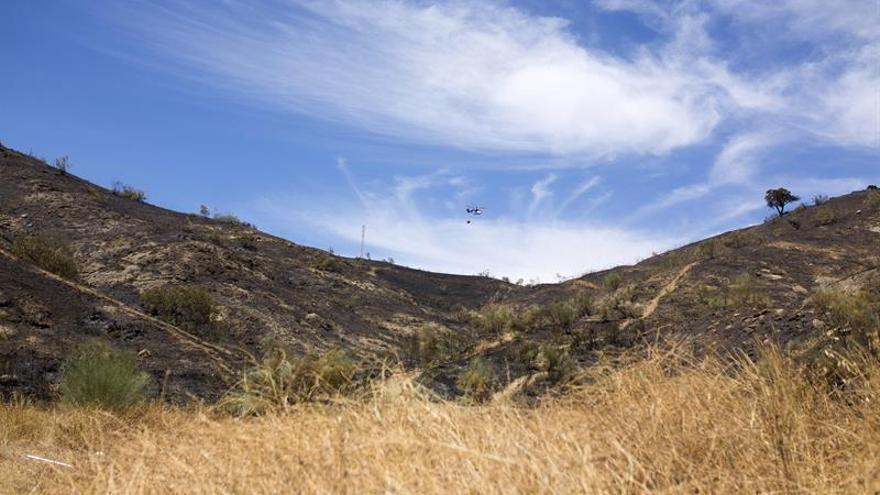 Declarado un incendio forestal en los Asperones de Málaga