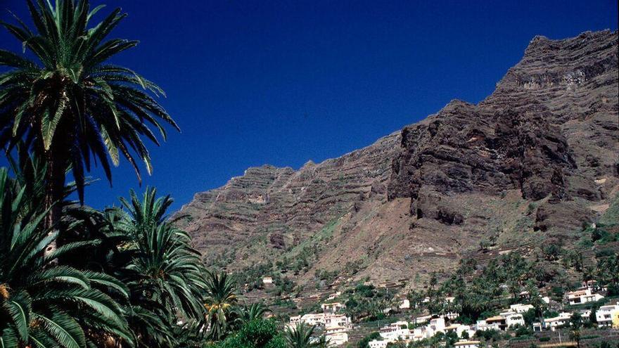 Tramo medio del barranco, con sus laderas colonizadas por las palmeras.