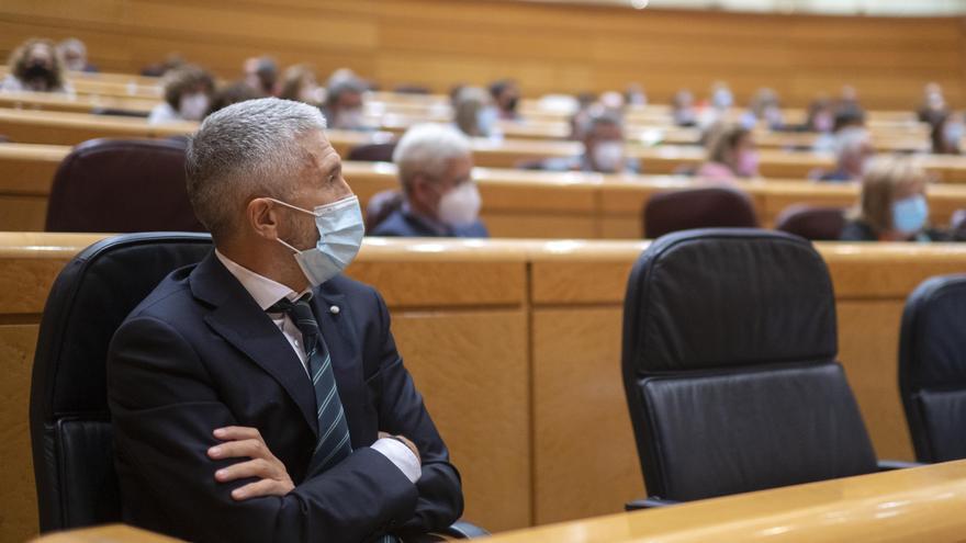 El ministro de Interior, Fernando Grande-Marlaska, durante el pleno del Senado